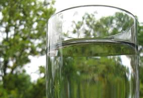 vaso_agua_fondo_verde