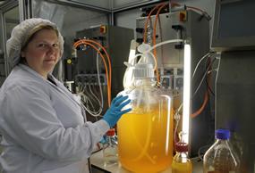 planta_bioproducción_ok