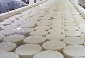producción_quesos_g