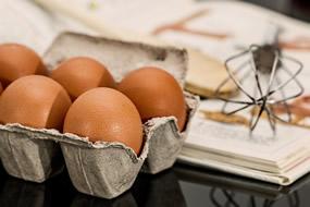 huevos_g