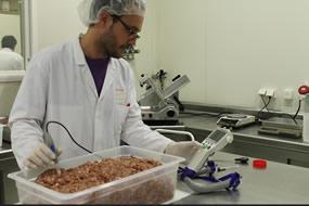 tecnico_ainia_trabajando_planta_nuevos_productos_evaluando_carne_picada_g