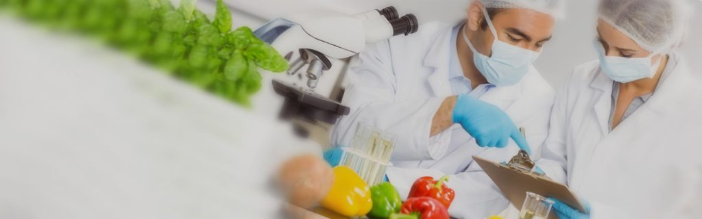 Mejora y desarrollo de productos alimentación
