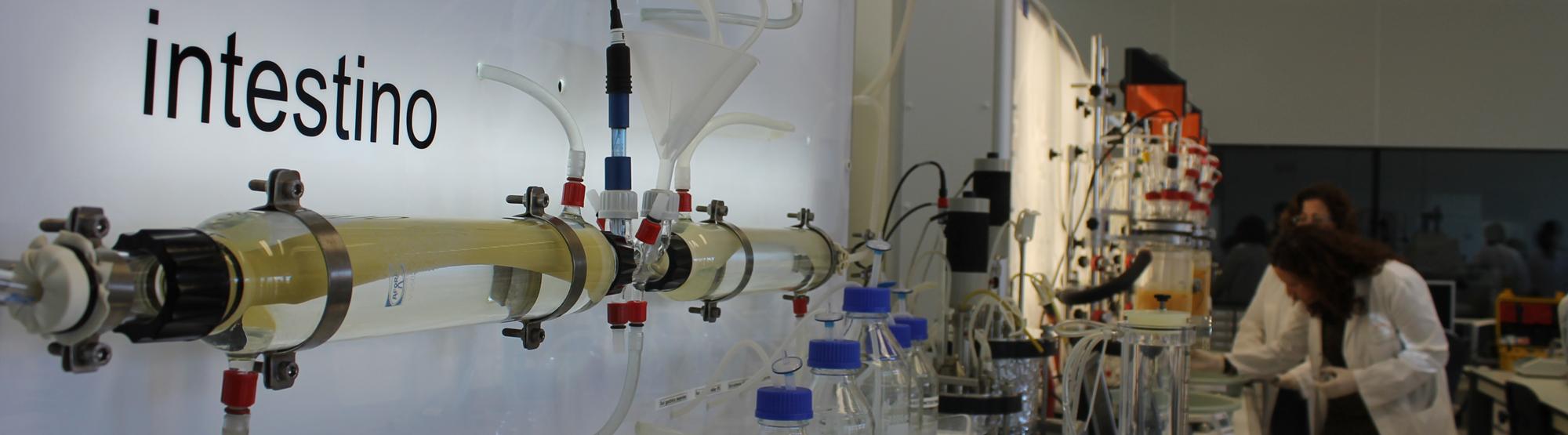 digestor-in-vitro