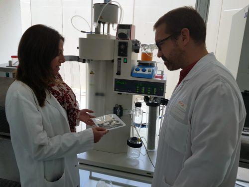proyecto Endotallium