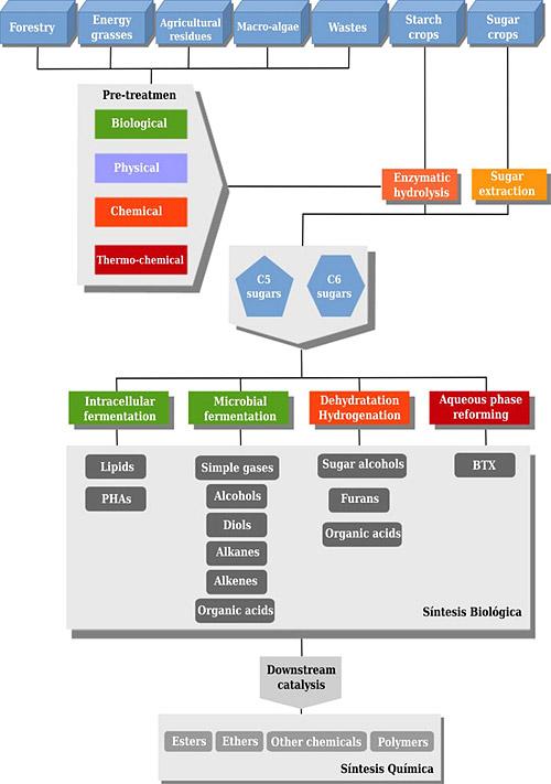 Generación de bioproductos