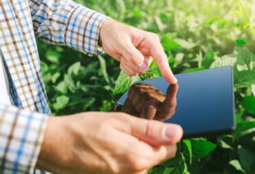 big data y agricultura