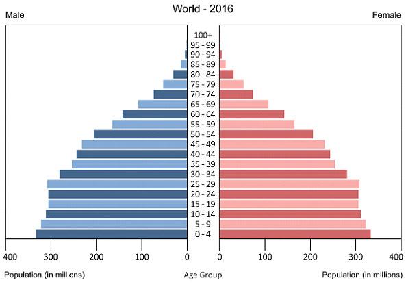 pimamide poblacional