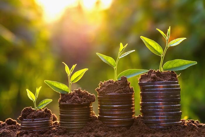 sostenibilidad-medioamiental