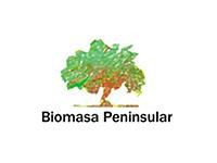 Bimoasa Peninsular