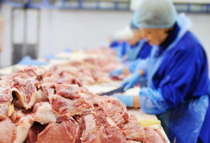 Unión Europea-etiquetado-bienestar animal