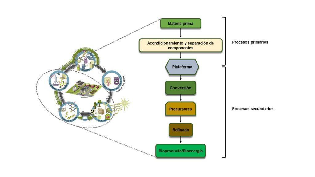 Las biorrefinerías, una apuesta firme hacia la (bio)economía circular