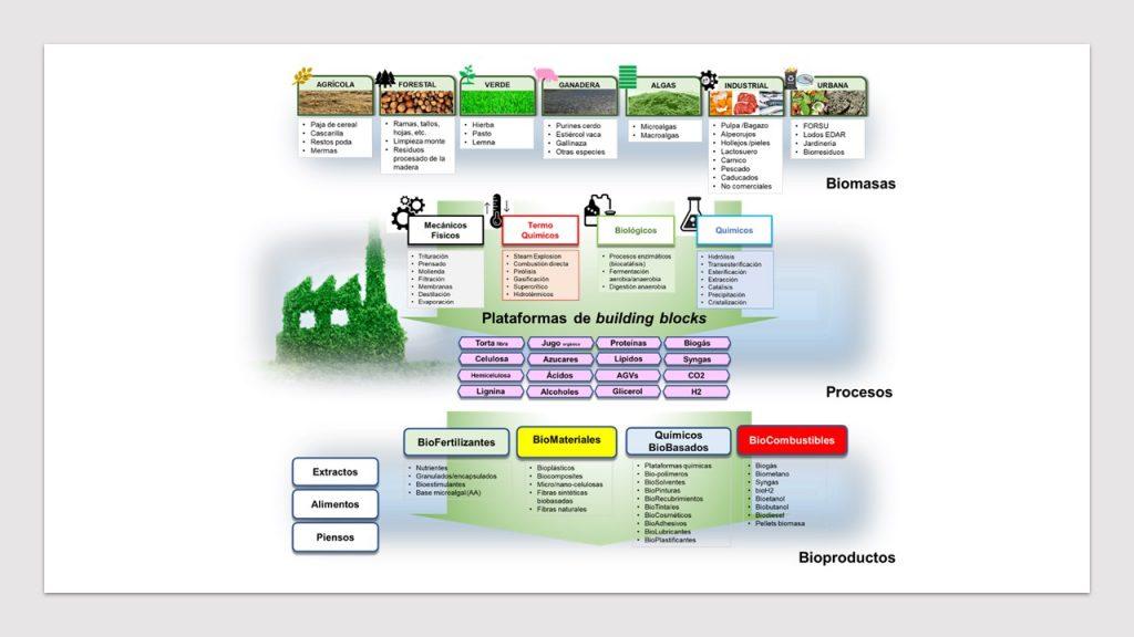 Figura 1. Cadenas de valor integradas y etapas de una biorrefinería.